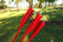 red feathered arrows